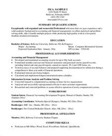 resume for experienced professional sle professional resume 7 exles in pdf