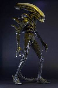 Closer Look: 1979 Alien 1/4 Scale Action Figure