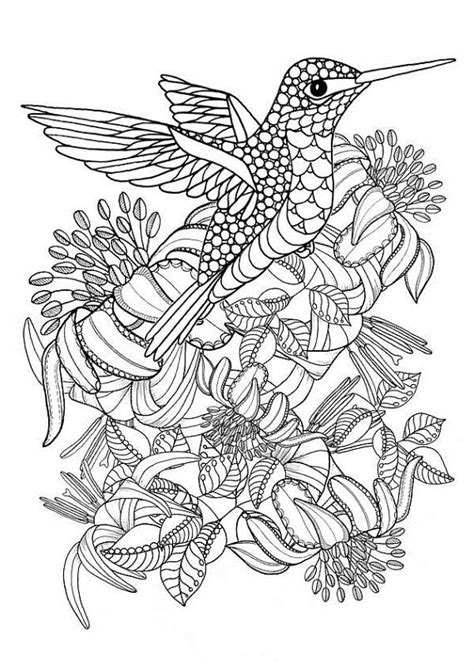 Hummingbird+Printable+Coloring+Pages.+Digital+by