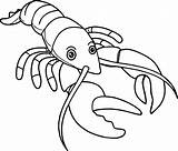 Lobster Coloring Outline Cartoon Pages Drawing Buoy Spiny Claw Colouring Line Template Realistic Sea Drawings Luxury Trap Getdrawings Animals Draw sketch template