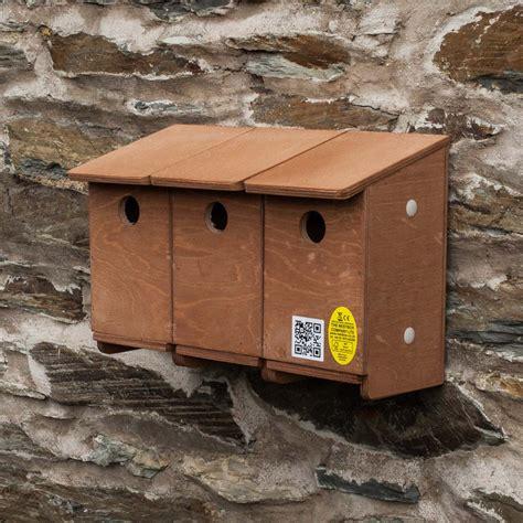sparrow terrace nest box elite ecology uk ecological consultants
