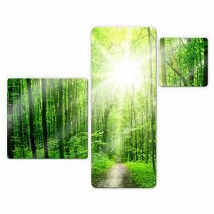 Glasbild 3 Teilig : glasbild sunny forest 3 teilig hochwertige deko f r die wand wall ~ Orissabook.com Haus und Dekorationen