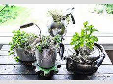Teapot Planters - Garden View Landscape