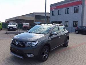 Sandero Stepway Brun Vison : sold dacia sandero stepway 0 9 tce used cars for sale autouncle ~ Maxctalentgroup.com Avis de Voitures