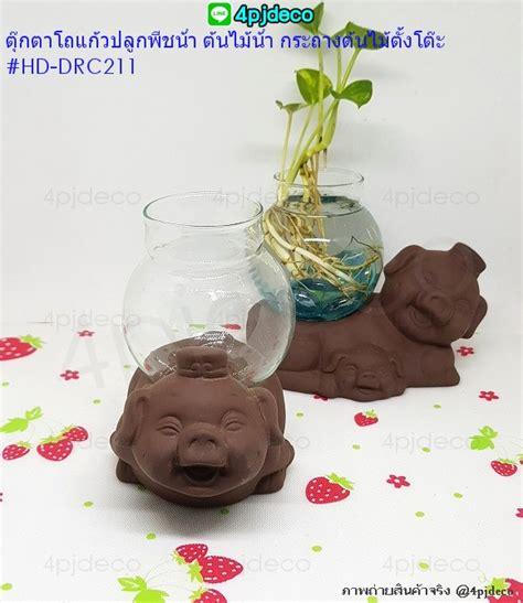 HD-DRC211 ตุ๊กตาโถแก้วปลูกต้นไม้ ปลูกพืชน้ำ ลายหมูเฮฮา ...