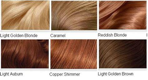1000+ Ideas About Medium Auburn Hair On Pinterest