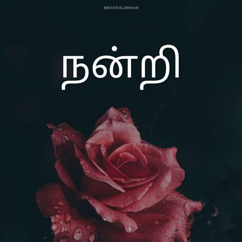 images  tamil hd  imagessrkhin