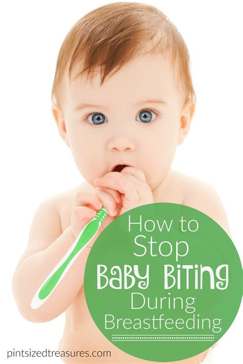 Baby Biting During Breastfeeding Babies Pregnancy And