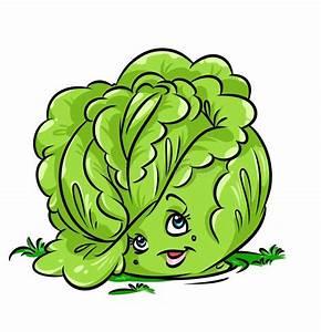 Cabbage Beauty Character Cartoon Illustration Stock ...