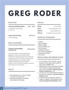 popular resume format 2017 best cv exles 2017 to try resume exles 2017