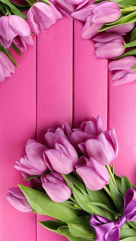 gambar wallpaper bunga pink impremedianet