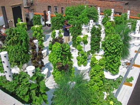 Vertical Hydroponic Gardening • Thecoolist-the Modern