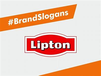 Lipton Slogans Benextbrand