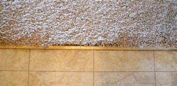 Flooring Transition Strips Rubber by How To Fix Frayed Carpet At Tile Transition Home