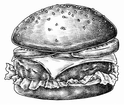 Burger Transparent Sketch Drawn Drawing Cheese Rawpixel