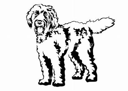 Labradoodle Clip Dog Svg Clipart Graphic Printable