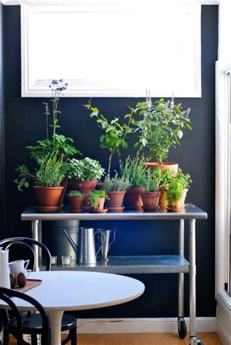 Indoor Window Herb Garden by 20 Indoor Herb Garden Ideas Home Design And Interior