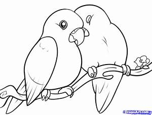 How to Draw Lovebirds, Step by Step, Birds, Animals, FREE ...