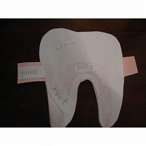 Two Preschool Lesson Plans On Teeth For Dental Hygiene Month