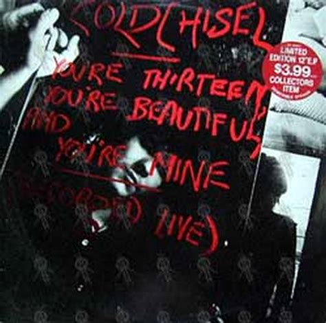 Posters Cold Chisel cold chisel youre thirteen youre beautiful  youre 504 x 500 · jpeg