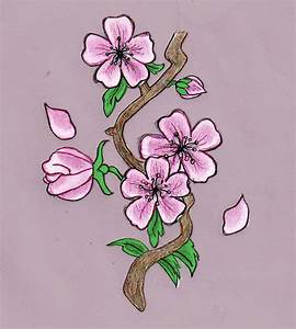 Cherry Blossom Drawing by HelloKitten20 on DeviantArt
