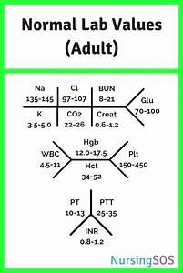 Cbc Chart Diagram - Chartreuse Definition Normal Lab Values Diagram Chart Cbc