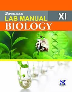 Download Saraswathi Class 11 Biology Lab Manual Pdf Online 2020