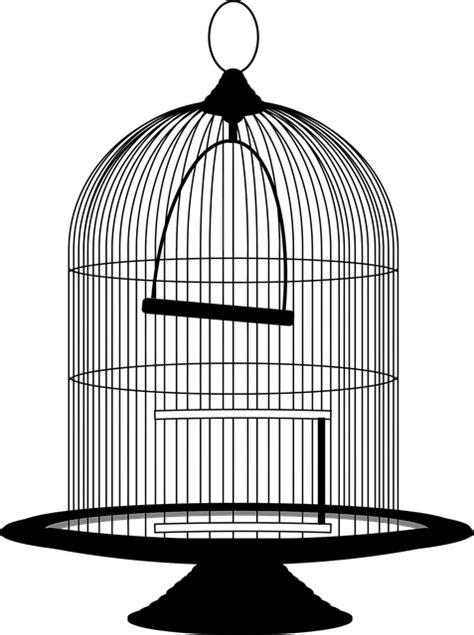 bird birdcage cage  vector graphic  pixabay