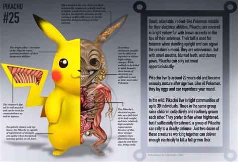 Pokenatomy Art Series Takes You Inside A Pokemon Pokémon