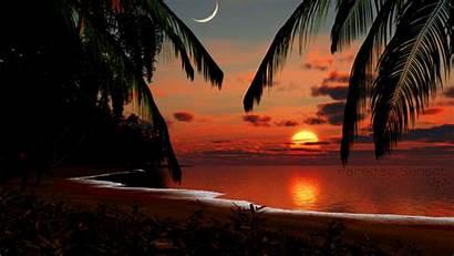 Sunset Tropical Desktop Paradise Wallpapers Nature Screensavers