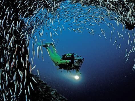 scuba diving south golden arches beach kailua kona hawaii usa