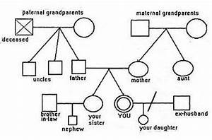 3 generation family genogram to start view this sample With family genome template
