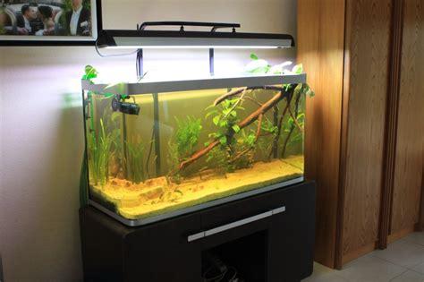 aquarium osaka 320 occasion osaka 320 pour apisto
