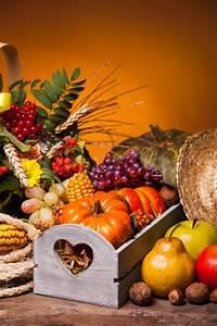 Happy Thanksgiving still life Fruits, Stock Photo