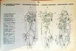 Modern Vespa   Help 1979 Wire Harness Question