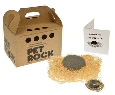 Original Pet Rock With Walking Leash Silly Gag Gift Gary