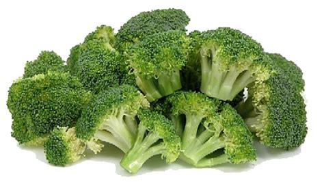 broccoli png transparent images   clip