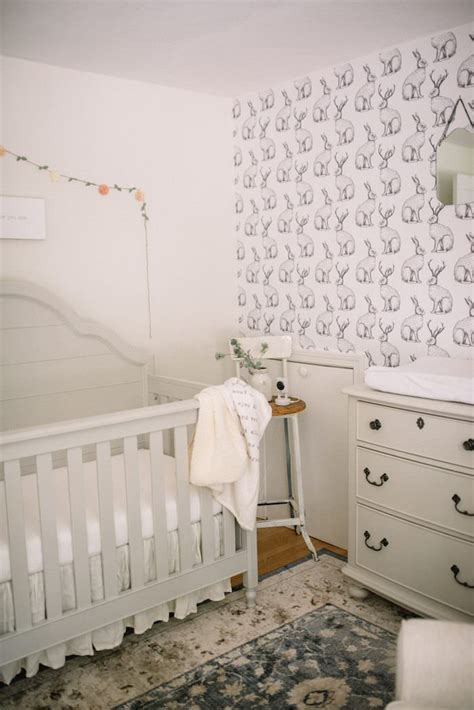 cribs   farmhouse nursery lynzy