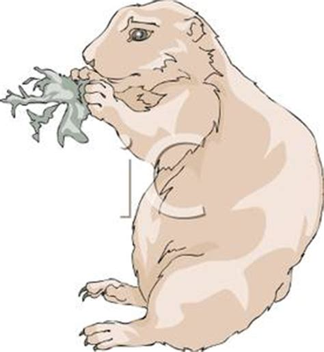 gopher clipart black and white a gopher a leaf royalty free clipart picture