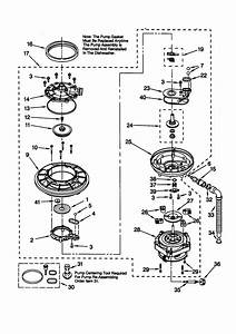 Pump And Motor Diagram  U0026 Parts List For Model 66515989990 Kenmore