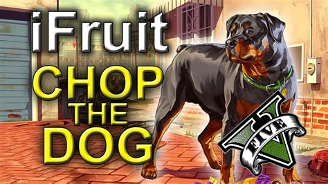 Ifruit App Chop The Dog Grand Theft Auto 5 Iphone