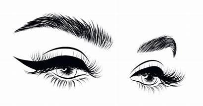 Vector Eyebrows Eyelashes Brow Lashes Lash Eye