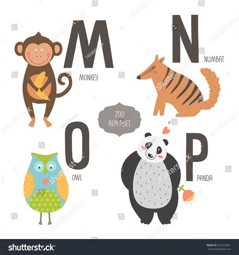 animals that start with the letter a zoo alphabet animals isolated stock 29229