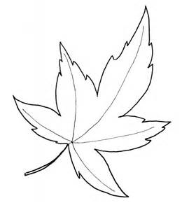free coloring pages of aspen leaf