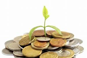 Invest 20% of your monthly income in mutual funds via SIP ...
