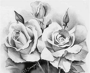 25+ best ideas about Rose drawings on Pinterest | How to ...