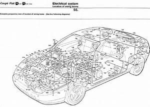 1993 Isuzu Tail Light Wiring Diagram