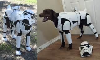 doberman pinscher dog dresses  star wars stormtrooper