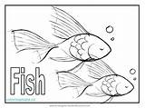 Coloring Fish Pages Tuna Printable Puffer Animal Getcolorings Sheet Zebra Popular sketch template