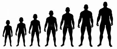 Growing Boy Silhouettes Steps Illustration Child Fat